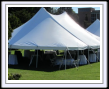 Party rentals in Lansing MI