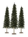 Rental store for Tree Needle Pine 7.5  INDOOR USE ONLY in Lansing MI