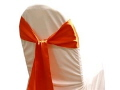 Rental store for Chair Sash, Burnt Orange 6  Satin in Lansing MI