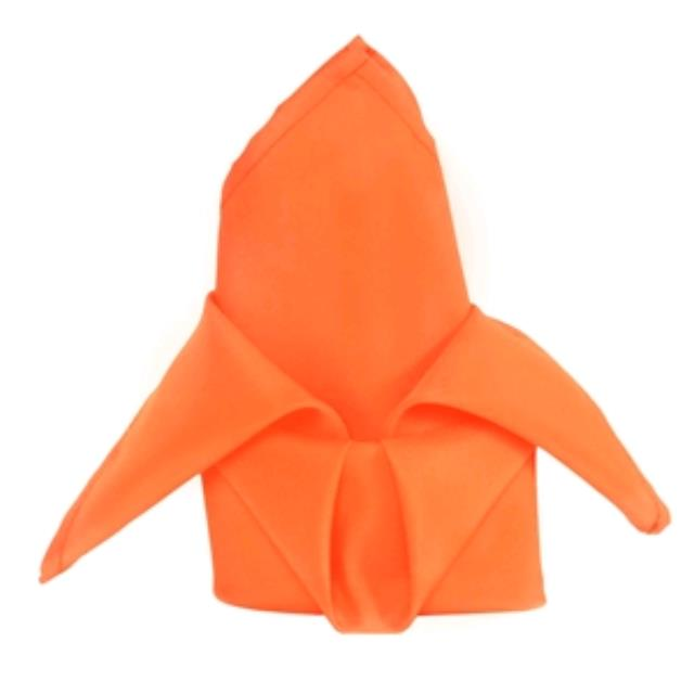 Where to rent Napkin, Orange FOR SALE in Haslett, Okemos, East Lansing and Greater Lansing