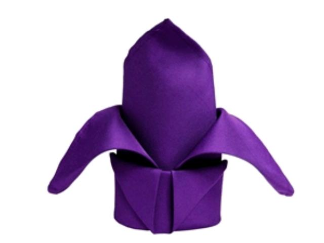 Where to rent Napkin, Purple in Haslett, Okemos, East Lansing and Greater Lansing