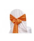 Rental store for Chair Sash, Orange Crinkle Satin 6 in Lansing MI