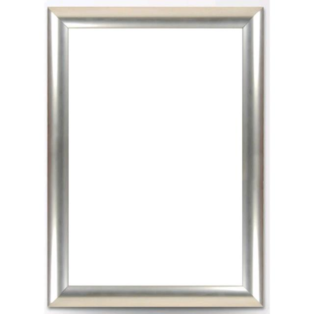 Where to rent Silver Frame 28  x 34 in Haslett, Okemos, East Lansing and Greater Lansing